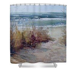 Spring On Lake Michigan Shower Curtain