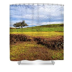 Shower Curtain featuring the photograph Spring On North Table Mountain by James Eddy