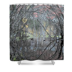 Spring On The Backwater Shower Curtain by John Selmer Sr