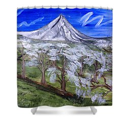 Spring On The Hood Shower Curtain