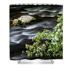 Shower Curtain featuring the photograph Spring On The Oconaluftee River - D009923 by Daniel Dempster