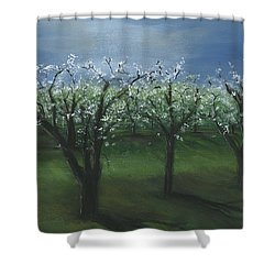 Spring Orchard Shower Curtain