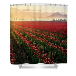 Spring Palette Shower Curtain by Ryan Manuel