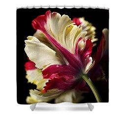 Spring Parrot Tulip Shower Curtain