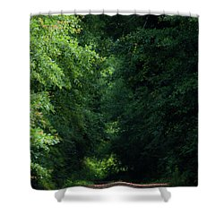 Shower Curtain featuring the photograph Spring Path Of Light by Shelby Young