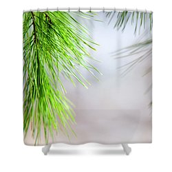 Shower Curtain featuring the photograph Spring Pine Abstract by Christina Rollo