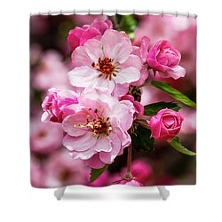Spring Pink Shower Curtain by Teri Virbickis