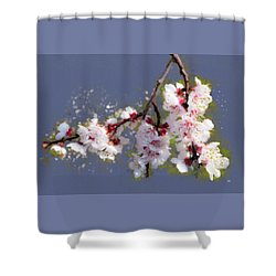 Spring Promise - Apricot Blossom Branch Shower Curtain