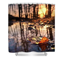 Spring Puddles Shower Curtain