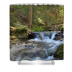 Spring Run Off Shower Curtain