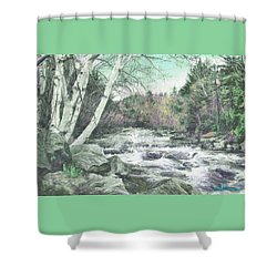 Spring Runoff Shower Curtain by John Selmer Sr