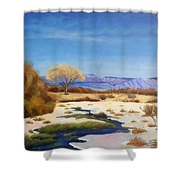 Spring Runoff Shower Curtain by Sherril Porter