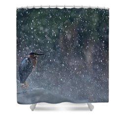 Spring Shower Shower Curtain