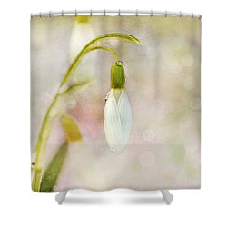 Spring Snowdrops And Bokeh Shower Curtain by Peggy Collins