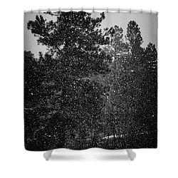 Spring Snowstorm Shower Curtain by Jason Coward
