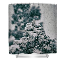 Spring Snowstorm On The Treetops Shower Curtain