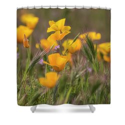 Shower Curtain featuring the photograph Spring Softly Calling  by Saija Lehtonen