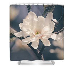 Shower Curtain featuring the photograph Spring Sonnet by Viviana  Nadowski