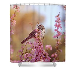 Spring Sparrow Shower Curtain by Lynn Bauer
