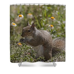 Spring Squirrel Shower Curtain
