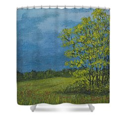 Shower Curtain featuring the painting Spring Storm - Spring Leaves by Kathleen McDermott