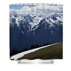 Spring Thaw Shower Curtain by Jane Eleanor Nicholas