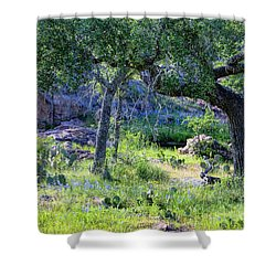 Spring Time In Texas Shower Curtain