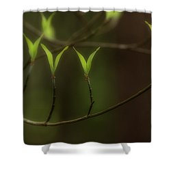 Shower Curtain featuring the photograph Spring Time by Mike Eingle