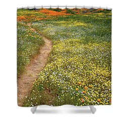 Shower Curtain featuring the photograph Spring Trail Through A Sea Of Wildflowers At Diamond Lake In California by Jetson Nguyen