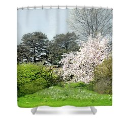 Shower Curtain featuring the photograph Spring Treasures by Diana Angstadt