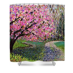 Spring Tree At New Pond Farm Shower Curtain