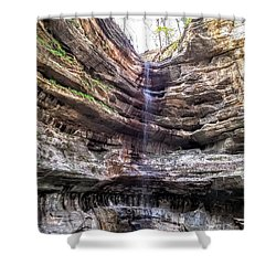 Shower Curtain featuring the painting Spring Trickling In by Darren Robinson