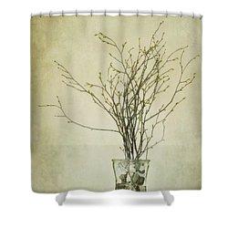 Spring Unfolds Shower Curtain by Priska Wettstein