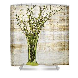 Spring Vase Shower Curtain by Elena Elisseeva