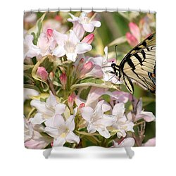Spring Visit Shower Curtain