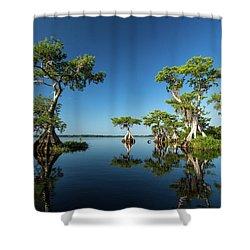 Spring Vistas At Lake Disston Shower Curtain