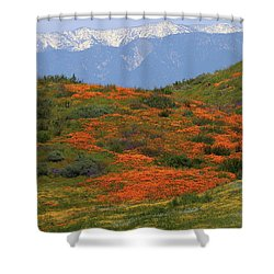 Spring Wildflower Display At Diamond Lake In California Shower Curtain