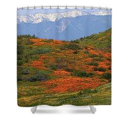 Spring Wildflower Display At Diamond Lake In California Shower Curtain