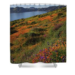 Spring Wildflower Season At Diamond Lake In California Shower Curtain by Jetson Nguyen