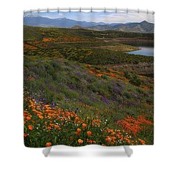 Shower Curtain featuring the photograph Spring Wildflowers At Diamond Lake In California by Jetson Nguyen