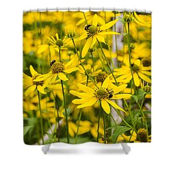 Spring Wildflowers Shower Curtain