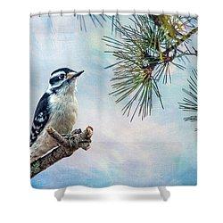 Spring Woodpecker Shower Curtain