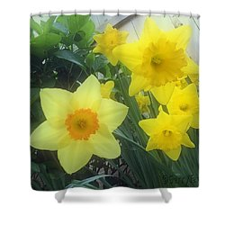 Springs Calling Card Shower Curtain