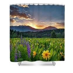 Spring's Delight Shower Curtain by Leland D Howard