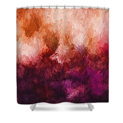 Spring's Entry Shower Curtain