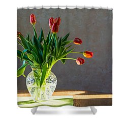 Springs Surprise Shower Curtain