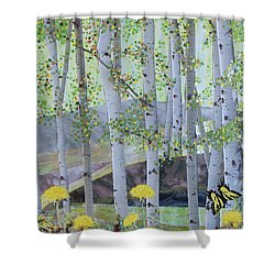 Springtime Aspens Shower Curtain