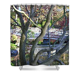 Springtime Bridge Through Japanese Maple Tree Shower Curtain by Carol Groenen