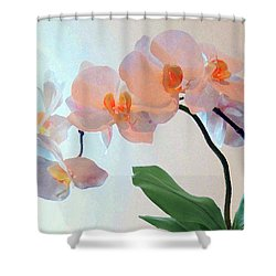 Springtime Delight 2 Shower Curtain