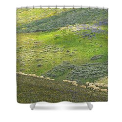 Springtime Graze.. Shower Curtain